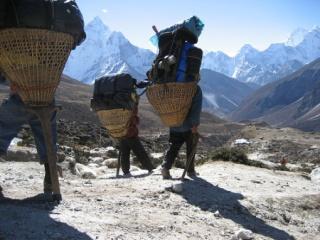 Sherpa Resting