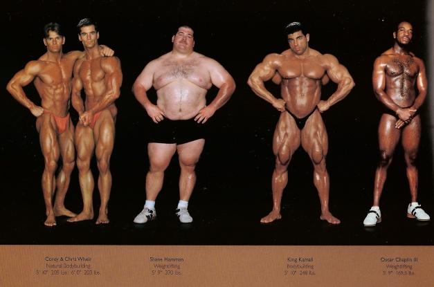 howard-schatz-and-beverly-ornstein-olympic-athlete-body-types-bodybuilding-weightlifting