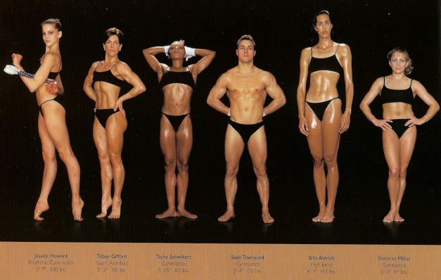 howard-schatz-and-beverly-ornstein-olympic-athlete-body-types-gymnastics-aerobics-high-jump