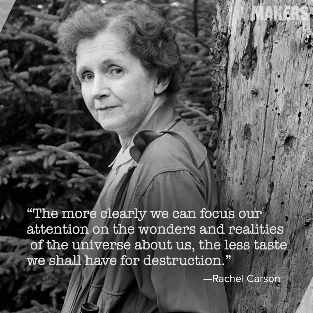 rachel carson s silent spring threat of Need help with chapter 8: and no birds sing in rachel carson's silent spring check out our revolutionary side-by-side summary and analysis.